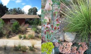 completed-garden
